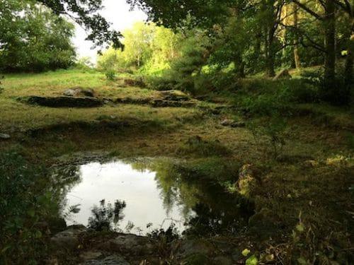 Waarom  Hidden Ponds of Clogherane